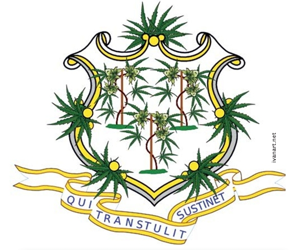 Connecticut Has Legalized Marijuana as Medicine