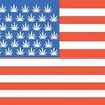All American Marijuana
