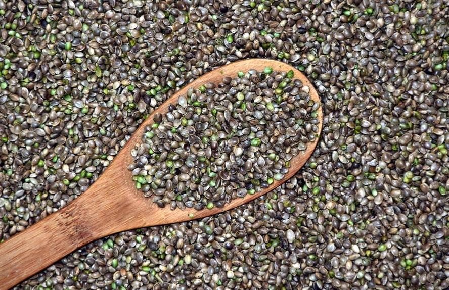 Top 5 Health Benefits of Hemp Seeds