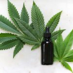 PharmaCielo (TSXV:PCLO) Granted Export Permit; Supplied First CBD Shipment to Switzerland
