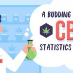 Amazing Success of the CBD Industry