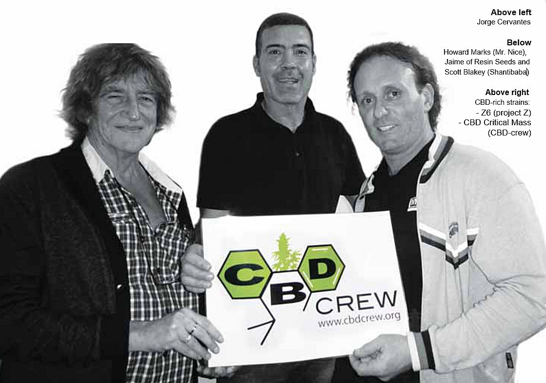 CBD Crew Launch